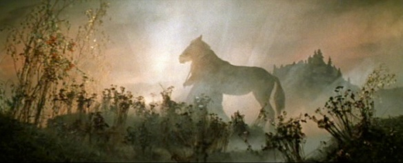 horse in mist copy