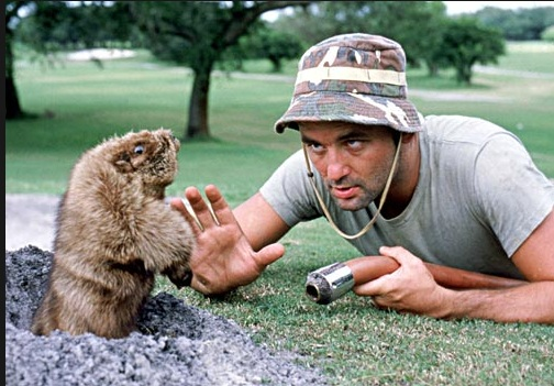 Billy Murray and his favorite tormentor in Caddyshack (1980)