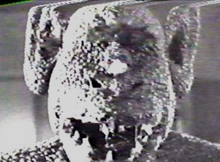 Another alien specimen on the Venusian spacecraft that invades Mexico in La Nave de los Monstruos (1960)
