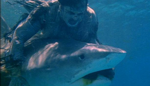 Zombie vs. Shark in Lucio Fulci's outrageous Zombi 2 (1979)